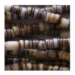 Coquillage rondelle marron 2/3mm